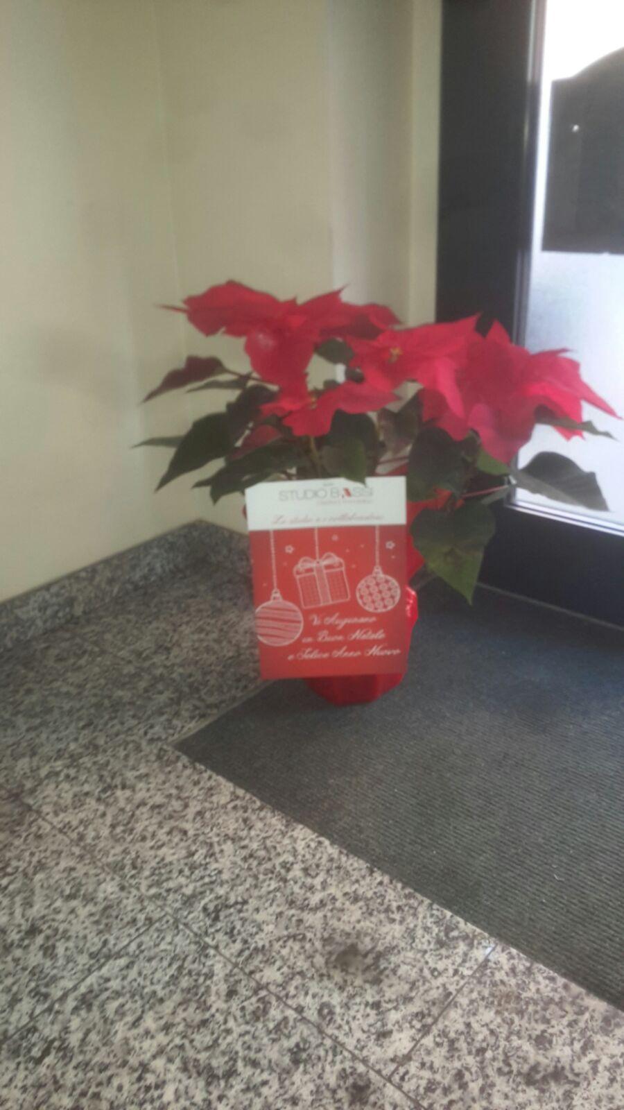 Stelle di Natale per Tutti i nostri Clienti condomini.