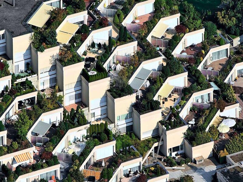 vantaggi e svantaggi dei giardini verticali
